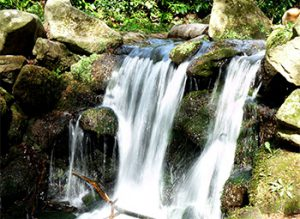waterfall-331312